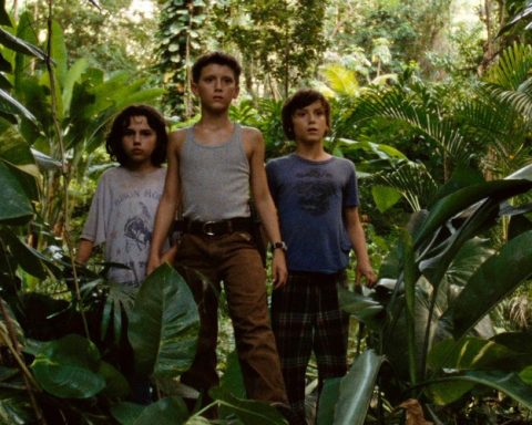 3 boys stand in a jungle-like enviroment